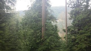 Main Photo: 1269 Adams Road in Bowen Island: Land for sale