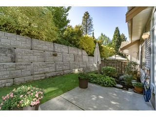 "Photo 20: 42 11860 RIVER Road in Surrey: Royal Heights Townhouse for sale in ""Cypress Ridge"" (North Surrey)  : MLS®# R2216703"