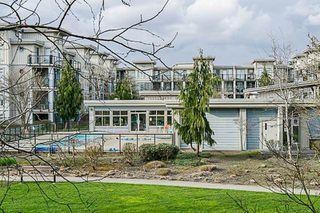 Photo 20: 216 15385 101A AVENUE in Surrey: Guildford Condo for sale (North Surrey)  : MLS®# R2253513