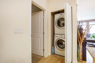 Photo 14: 216 15385 101A AVENUE in Surrey: Guildford Condo for sale (North Surrey)  : MLS®# R2253513