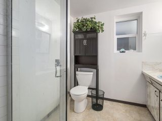 """Photo 20: 3901 TUPPER Street in Vancouver: Cambie House for sale in """"Douglas Park"""" (Vancouver West)  : MLS®# R2256298"""