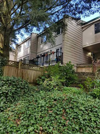 """Photo 15: 39 10555 153RD Street in Surrey: Guildford Townhouse for sale in """"guildford mews"""" (North Surrey)  : MLS®# R2255781"""