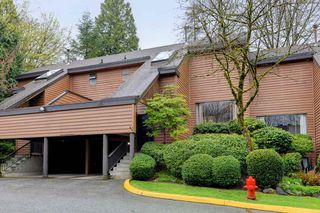 Photo 17: 427 CAMBRIDGE Way in Port Moody: College Park PM Townhouse for sale : MLS®# R2258095