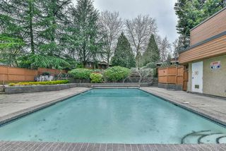 Photo 18: 1214 10620 150 STREET in Surrey: Guildford Townhouse for sale (North Surrey)  : MLS®# R2250514