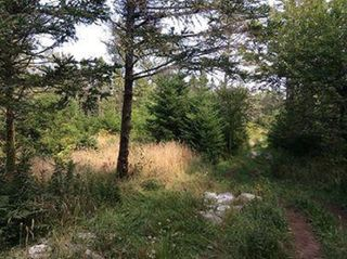 Photo 8: Oceanfront Stoney Island Highway 330 in Stoney Island: 407-Shelburne County Vacant Land for sale (South Shore)  : MLS®# 201822121