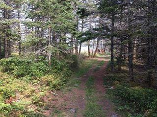 Photo 10: Oceanfront Stoney Island Highway 330 in Stoney Island: 407-Shelburne County Vacant Land for sale (South Shore)  : MLS®# 201822121