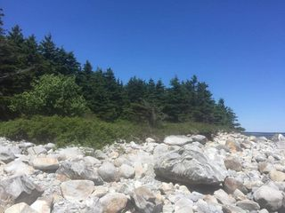 Photo 5: Oceanfront Stoney Island Highway 330 in Stoney Island: 407-Shelburne County Vacant Land for sale (South Shore)  : MLS®# 201822121