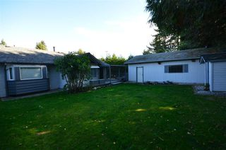 Photo 18: 32656 MARSHALL Road in Abbotsford: Abbotsford West House for sale : MLS®# R2317206