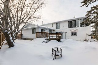 Photo 25: 101 Hillside Place: Millet House for sale : MLS®# E4142659