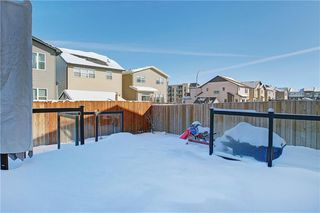Photo 29: 215 WALDEN Mews SE in Calgary: Walden Detached for sale : MLS®# C4228168