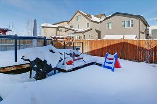Photo 28: 215 WALDEN Mews SE in Calgary: Walden Detached for sale : MLS®# C4228168