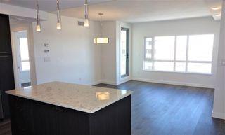 Photo 16: 1604 9720 106 Street in Edmonton: Zone 12 Condo for sale : MLS®# E4145543