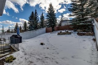 Photo 20: 87 MACEWAN PARK Circle NW in Calgary: MacEwan Glen Detached for sale : MLS®# C4233522