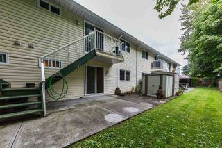 Photo 14: 15 20799 119 Avenue in Maple Ridge: Southwest Maple Ridge Townhouse for sale : MLS®# R2350767