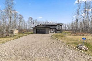 Photo 22: 63304 RR434: Rural Bonnyville M.D. House for sale : MLS®# E4156531