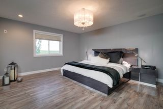 Photo 19: 2229 CAMERON RAVINE Court in Edmonton: Zone 20 House for sale : MLS®# E4163454