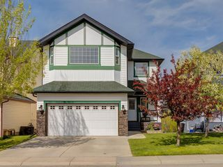 Photo 43: 140 BAYSIDE Point SW: Airdrie Detached for sale : MLS®# C4304964