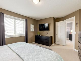 Photo 22: 140 BAYSIDE Point SW: Airdrie Detached for sale : MLS®# C4304964