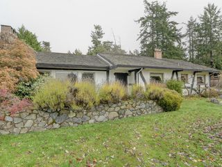 Photo 21: 3959 Burchett Pl in Saanich: SE Arbutus House for sale (Saanich East)  : MLS®# 842261