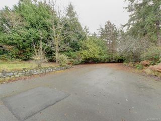 Photo 18: 3959 Burchett Pl in Saanich: SE Arbutus House for sale (Saanich East)  : MLS®# 842261