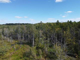 Photo 4: 225 Lively Road in Middle Sackville: 26-Beaverbank, Upper Sackville Vacant Land for sale (Halifax-Dartmouth)  : MLS®# 202018440