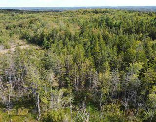 Photo 1: 225 Lively Road in Middle Sackville: 26-Beaverbank, Upper Sackville Vacant Land for sale (Halifax-Dartmouth)  : MLS®# 202018440