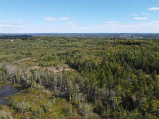 Photo 2: 225 Lively Road in Middle Sackville: 26-Beaverbank, Upper Sackville Vacant Land for sale (Halifax-Dartmouth)  : MLS®# 202018440