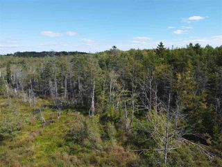 Photo 6: 225 Lively Road in Middle Sackville: 26-Beaverbank, Upper Sackville Vacant Land for sale (Halifax-Dartmouth)  : MLS®# 202018440