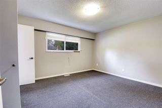Photo 10: 19941 44B Avenue in Langley: Brookswood Langley House for sale : MLS®# R2507664