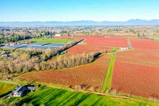 Photo 8: LT.3 240 STREET in Langley: Otter District Land for sale : MLS®# R2520982