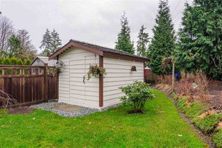 "Photo 19: 4868 223B Street in Langley: Murrayville House for sale in ""Radius/Hillcrest"" : MLS®# R2524153"
