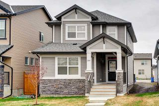 Photo 18: 301 SKYVIEW SPRINGS Gardens NE in CALGARY: Skyview Ranch Residential Detached Single Family for sale (Calgary)  : MLS®# C3613712