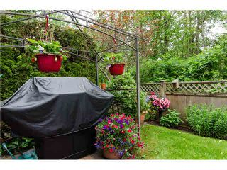 """Photo 9: 17 6950 120TH Street in Surrey: West Newton Townhouse for sale in """"Cougar Creek"""" : MLS®# F1442837"""