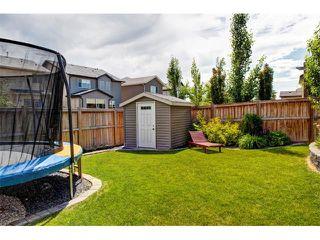 Photo 31: 23 AUTUMN Gardens SE in Calgary: Auburn Bay House for sale : MLS®# C4017577