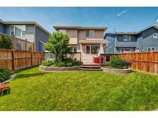 Photo 30: 23 AUTUMN Gardens SE in Calgary: Auburn Bay House for sale : MLS®# C4017577