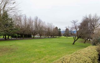 Photo 13: 2249 E 19TH Avenue in Vancouver: Grandview VE House for sale (Vancouver East)  : MLS®# R2032611
