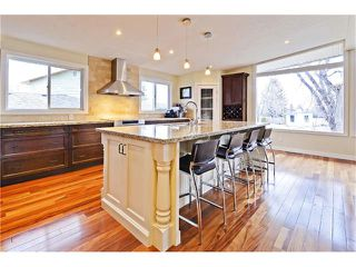 Photo 3: 8 LORNE Place SW in Calgary: North Glenmore Park House for sale : MLS®# C4052972