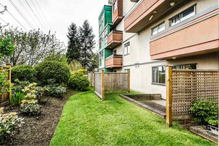 "Photo 13: 103 12025 207A Street in Maple Ridge: Northwest Maple Ridge Condo for sale in ""ATRIUM"" : MLS®# R2057622"