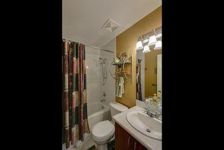 "Photo 15: 4 6333 PRINCESS Lane in Richmond: Steveston South Townhouse for sale in ""LONDON LANDING"" : MLS®# R2144226"