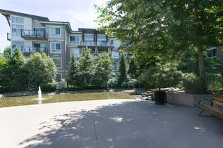 Photo 35: 102 6688 120 Street in Surrey: West Newton Condo for sale : MLS®# R2184850