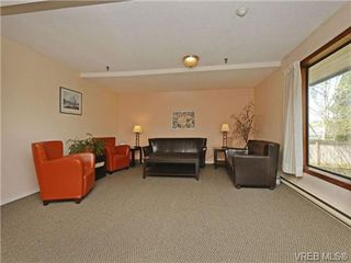 Photo 11: 204 1137 View Street in VICTORIA: Vi Downtown Residential for sale (Victoria)  : MLS®# 350110
