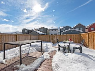 Photo 26: 141 NEW BRIGHTON Park SE in Calgary: New Brighton House for sale : MLS®# C4171872
