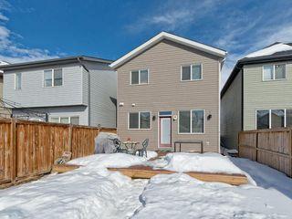 Photo 27: 141 NEW BRIGHTON Park SE in Calgary: New Brighton House for sale : MLS®# C4171872