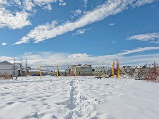 Photo 28: 141 NEW BRIGHTON Park SE in Calgary: New Brighton House for sale : MLS®# C4171872