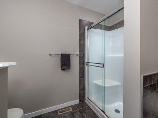 Photo 24: 141 NEW BRIGHTON Park SE in Calgary: New Brighton House for sale : MLS®# C4171872