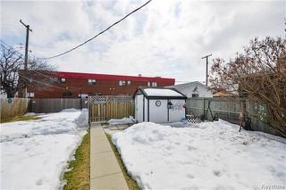 Photo 16: 36 Glenlawn Avenue in Winnipeg: Elm Park Residential for sale (2C)  : MLS®# 1806385