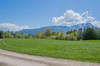 Photo 96: 341 Southwest 60 Street in Salmon Arm: GLENEDEN House for sale (SW Salmon Arm)  : MLS®# 10157771