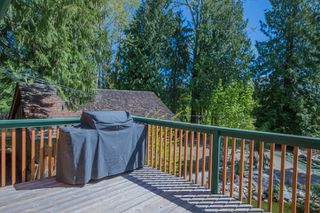 Photo 11: 341 Southwest 60 Street in Salmon Arm: GLENEDEN House for sale (SW Salmon Arm)  : MLS®# 10157771