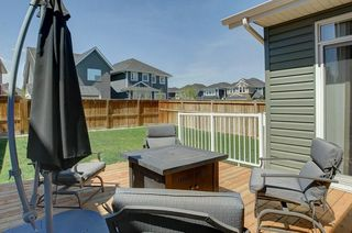 Photo 27: 99 AUBURN SPRINGS Close SE in Calgary: Auburn Bay House for sale : MLS®# C4185293
