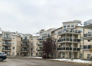 Main Photo: 227 9730 174 Street in Edmonton: Zone 20 Condo for sale : MLS®# E4132404